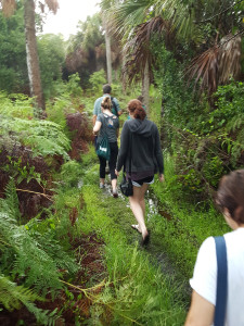USF St. Petersburg freshman students and faculty member Dr. John Arthur trek through Weedon Island Preserve to one of the dig sites.