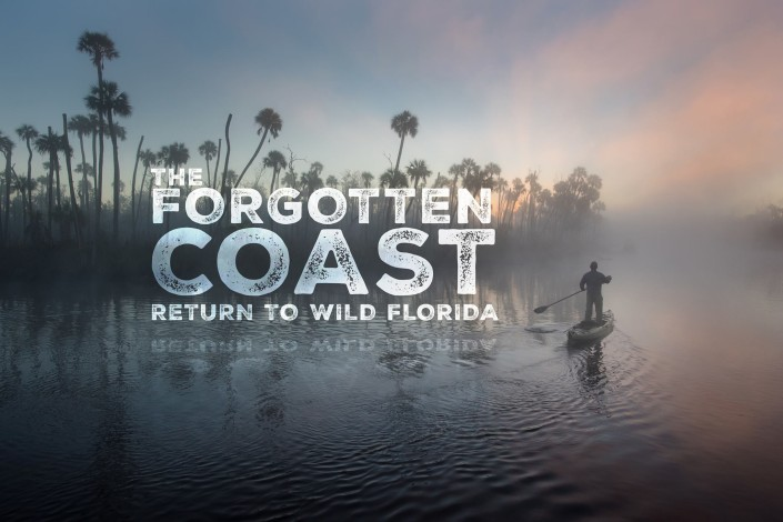 A photo of a movie graphic. Photo courtesy of Carlton Ward Jr and floridawildlifecorridor.org.