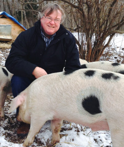 Author Barry Estabrook with pigs at Glynwood Institute, NY.