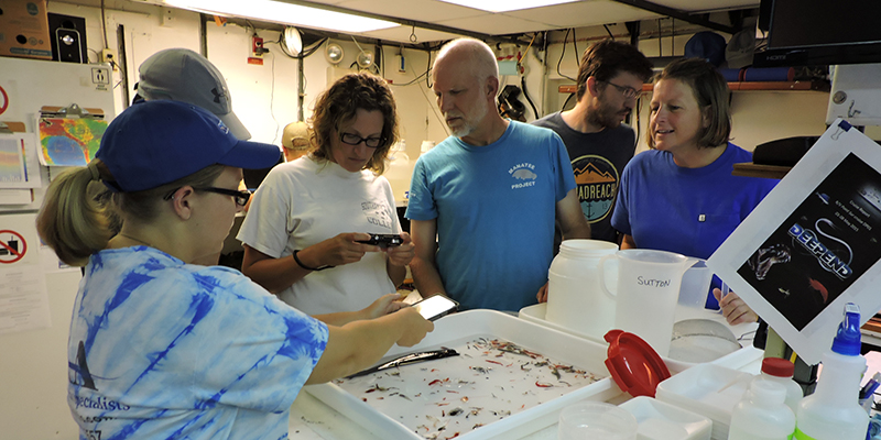 A photo of some of the research team members from a 2015 DEEPEND Consortium cruise in the Gulf of Mexico studying specimens
