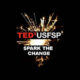 The graphic for TEDxUSFSP