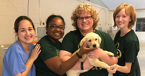 A photo of four students with a Southeastern Guide Dog puppy named Howie