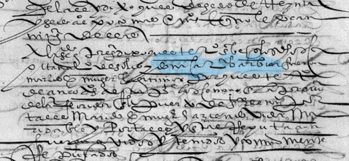 A portion of a primary document (the letters highlighted in blue are an abbreviation for the petitioner's name, doña Catalina Barbón).