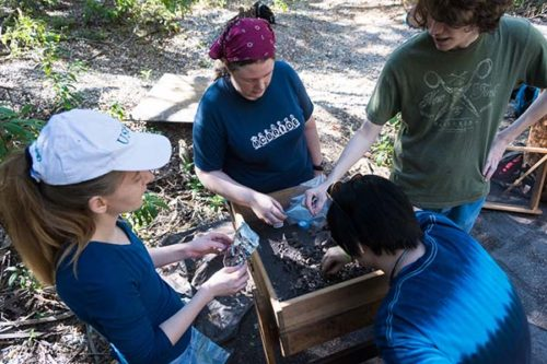 Kristina Wood, Bethany Brittingham, Zorana Knezevic, and Chandler Lazear working at the Weedon Island archaeological site.