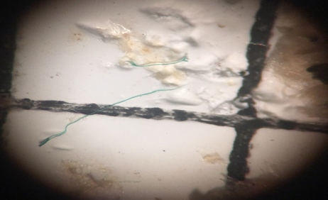 Photo-5-Green-microplastic-thread-melted-at-the-end-from-the-heated-probe-test