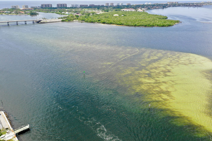 Aerial view of red tide along Florida's gulf coast